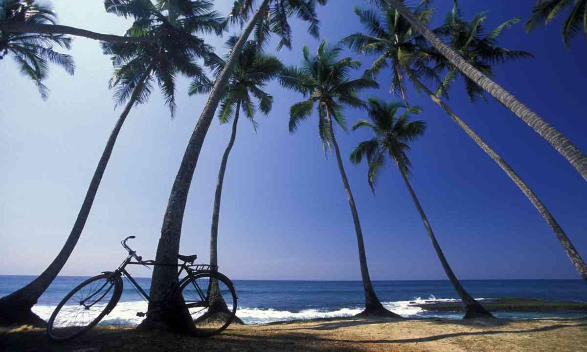 Beach and bike in Hikaduwa, Sri Lanka (Dreamstime)