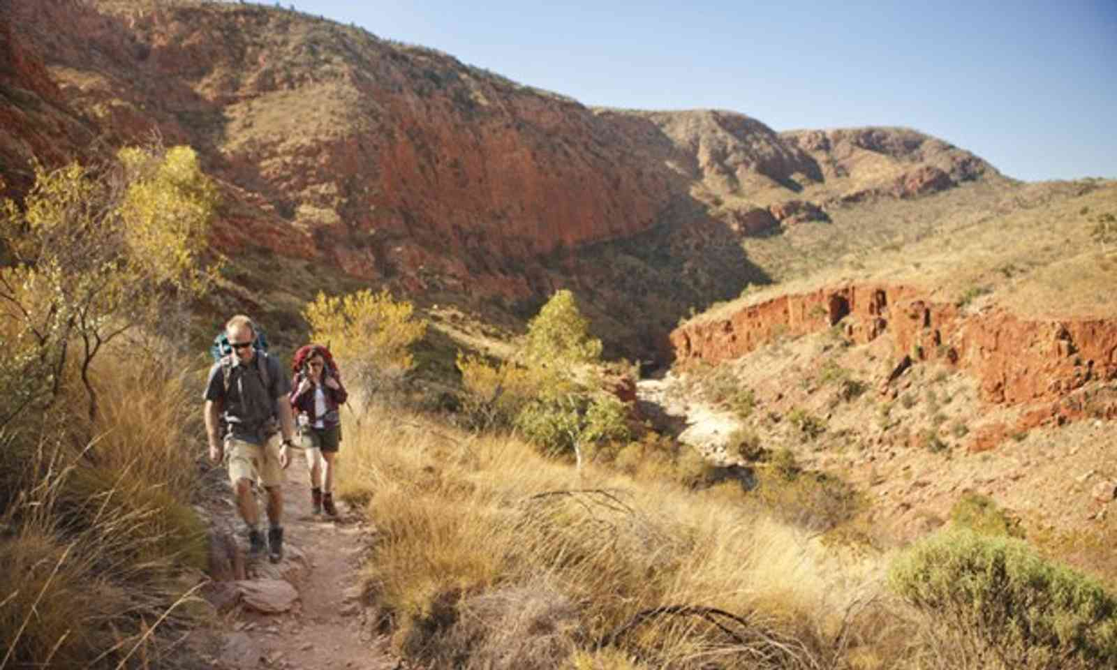 Hiking the Larapinta trail (Tourism NT)