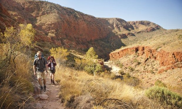 Hiking the Larapinta trail (Tourism NT)