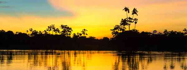Sunset over the Amazon in Peru (Shutterstock.com. See main credit below)
