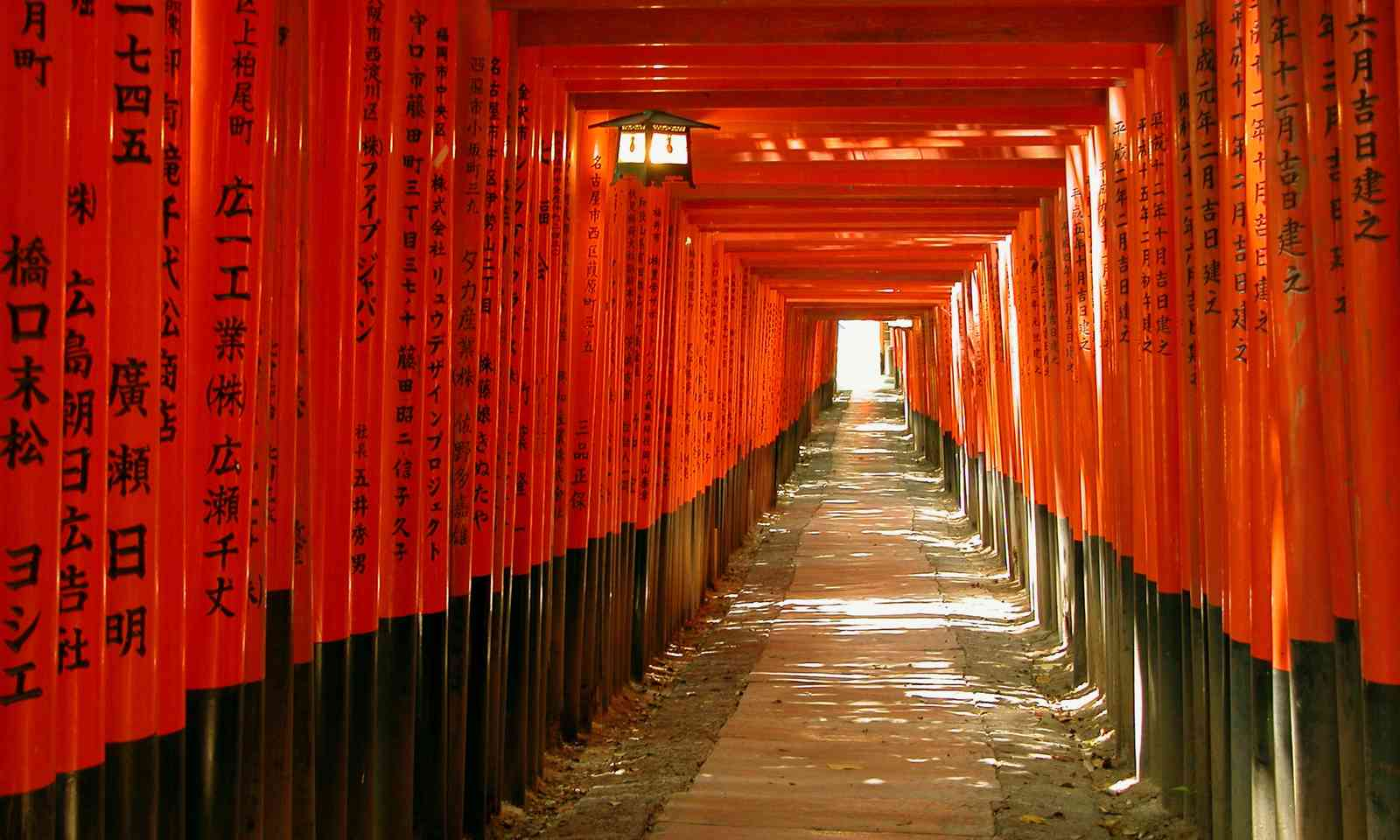 Gates tunnel, Inari Shrine, Kyoto (Dreamstime)