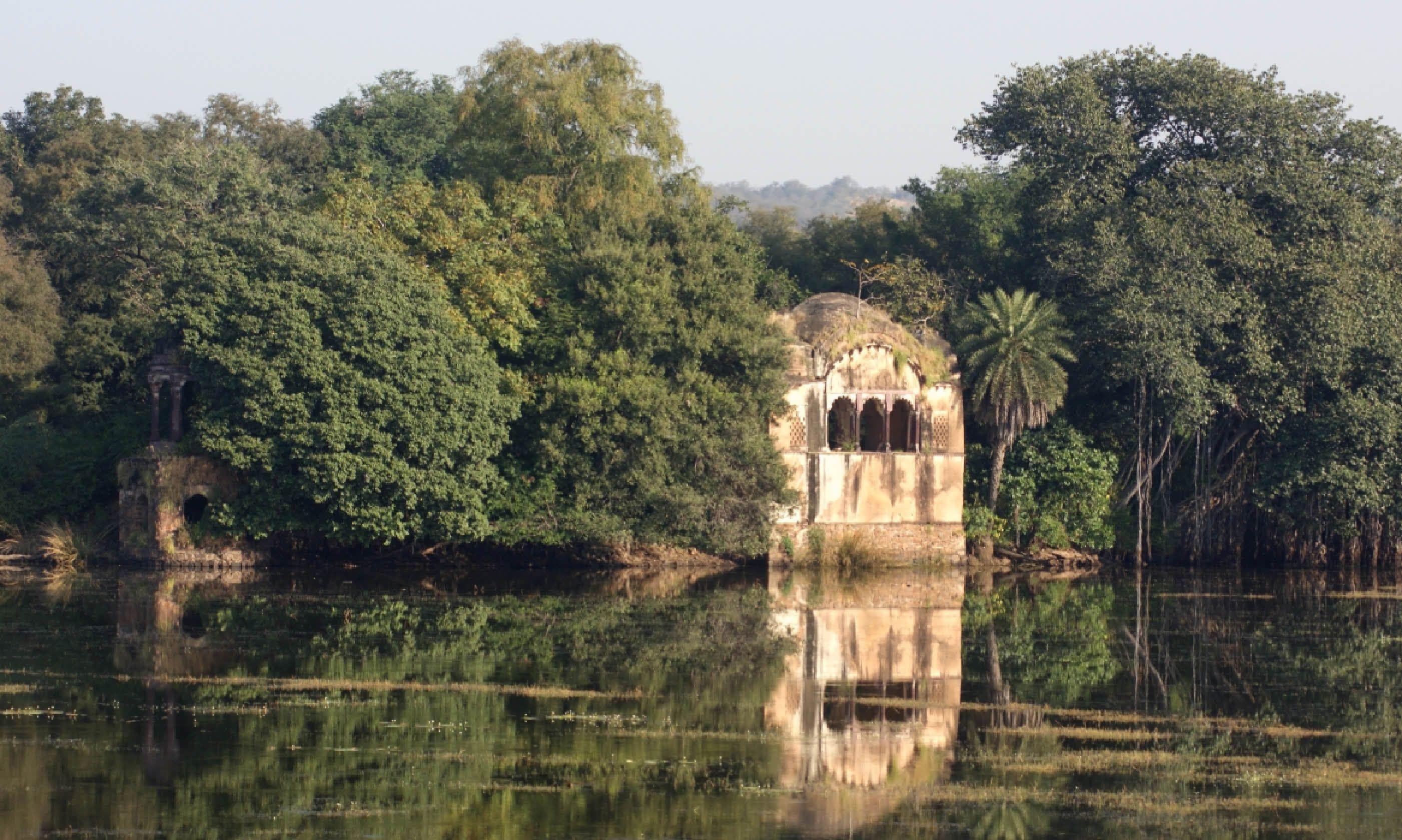 Ranthambhore National Park (Dreamstime)