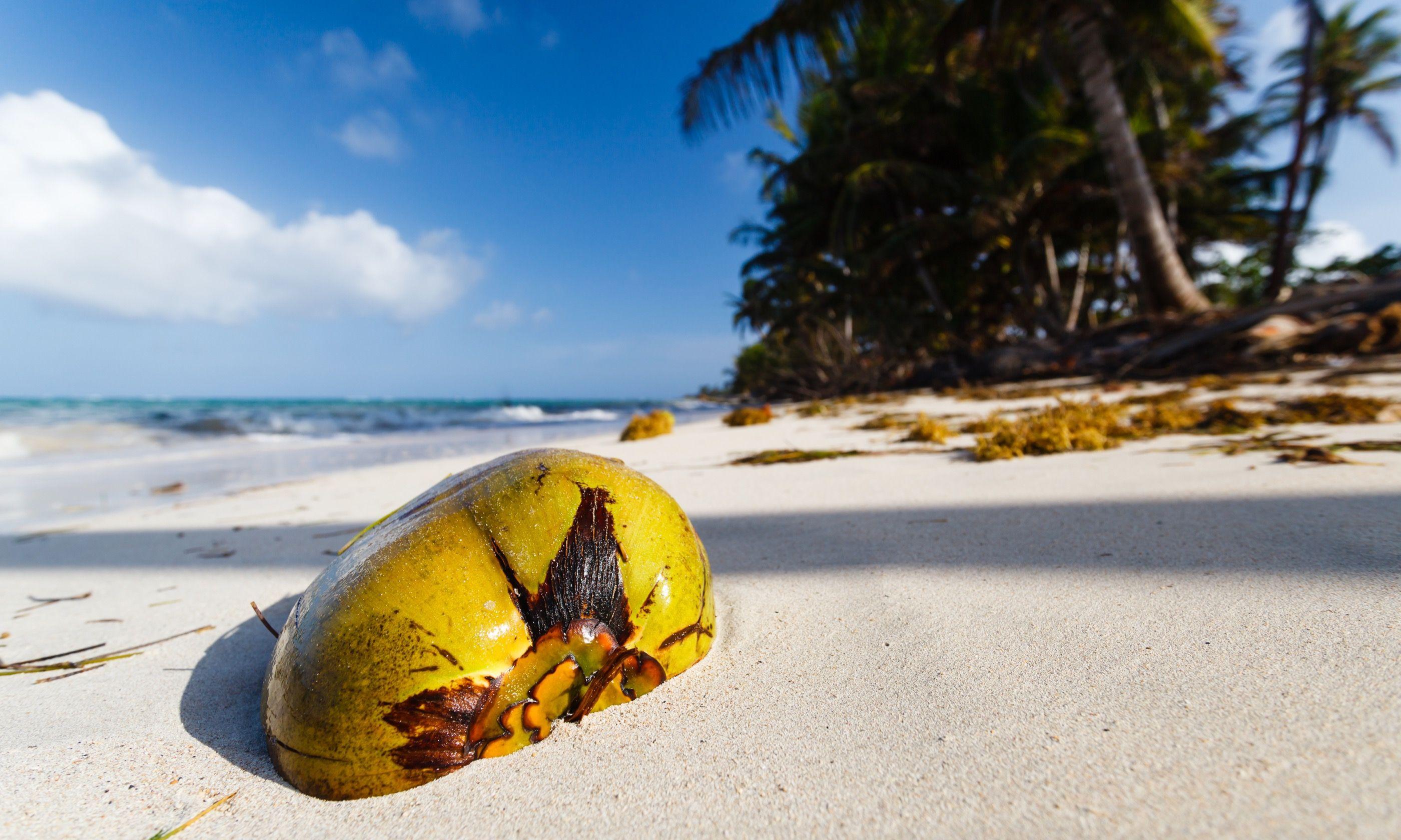 Beach on Little Corn Island, Nicaragua (Dreamstime)