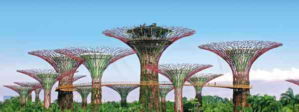 Singapore Gardens by the Bay (Dreamstime)