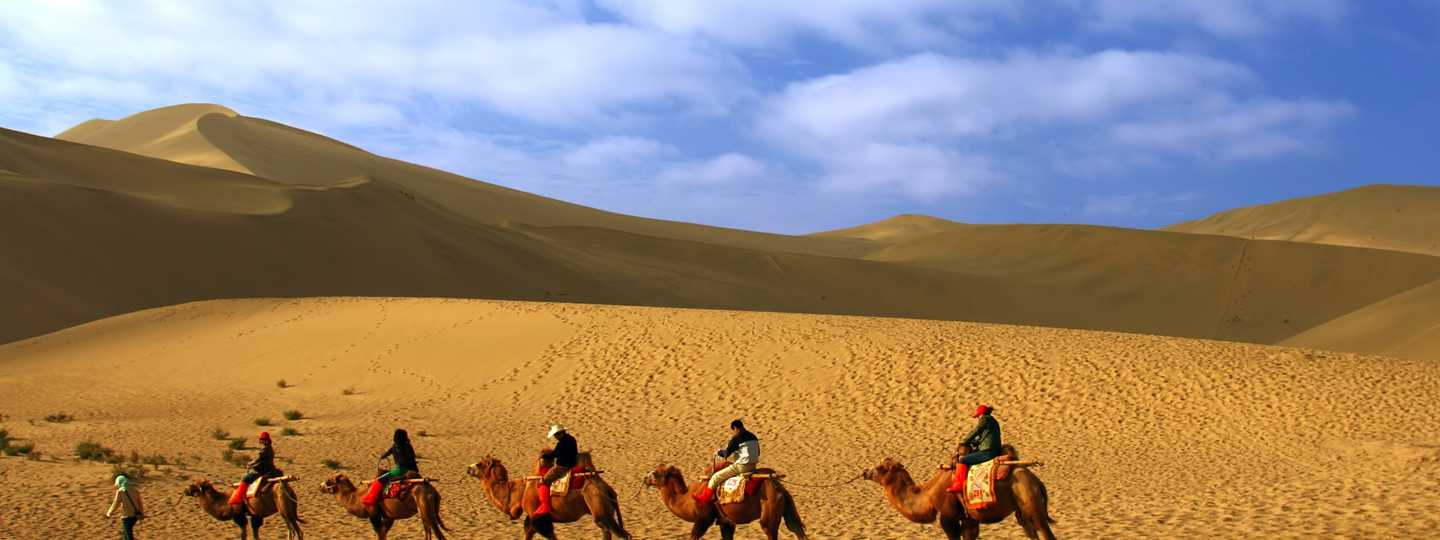Camel train on the Silk Road (Dreamstime)