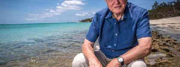 Sir David Attenborough on The Great Barrier Reef (Freddie Claire-BBC Pictures-Atlantic Productions)