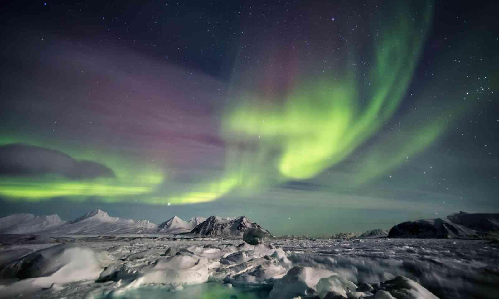 Aurora Borealis in Svalbard (Shutterstock)