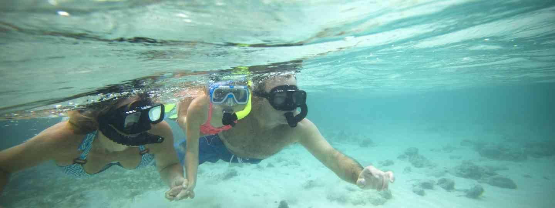 Swimmer (Belize tourist board)