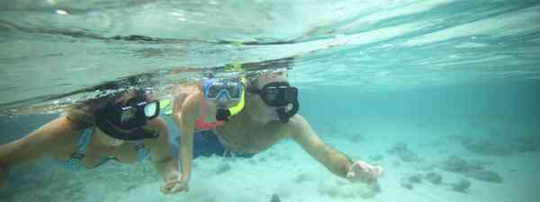 Swimmer (Belize tourist board)