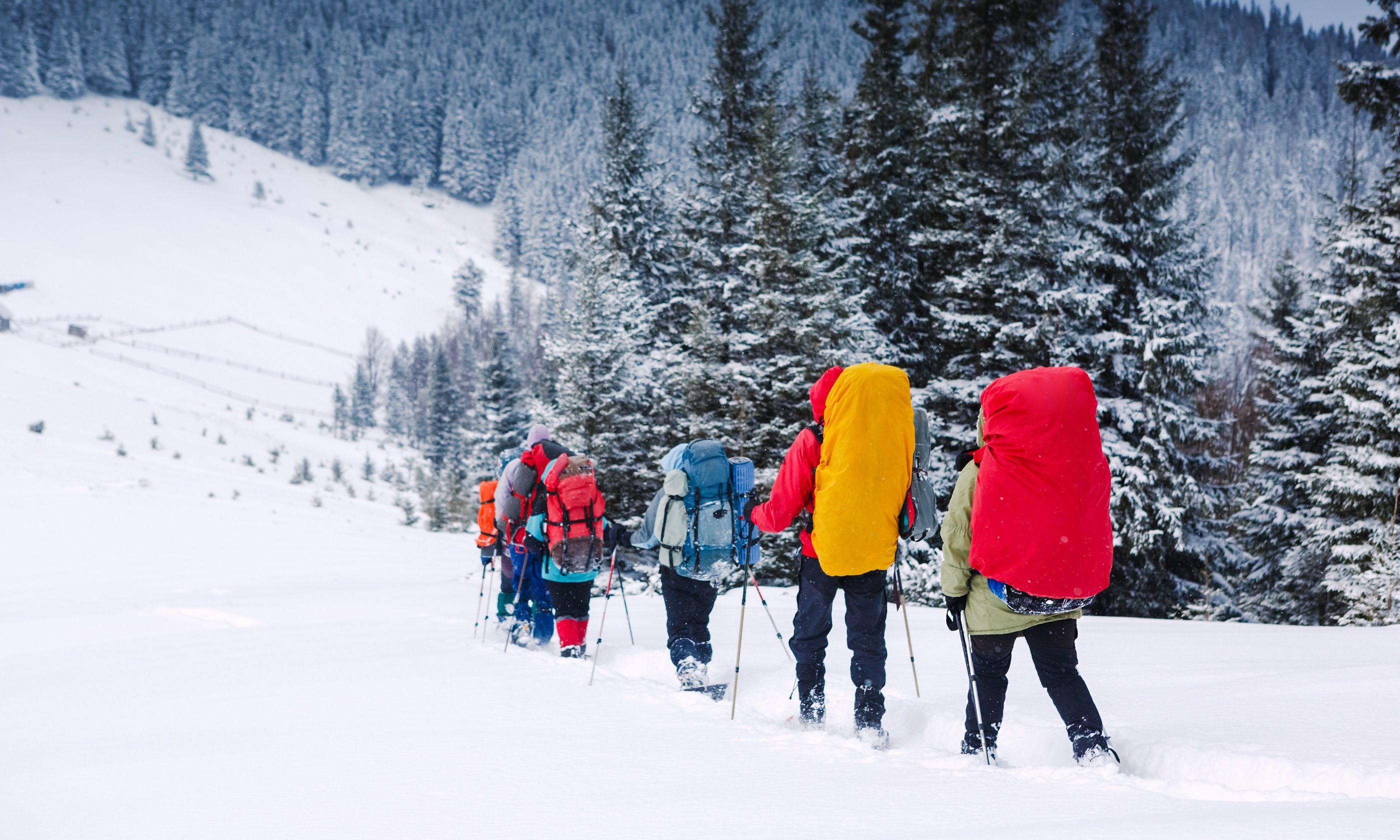 Snowshoeing (Shutterstock.com)