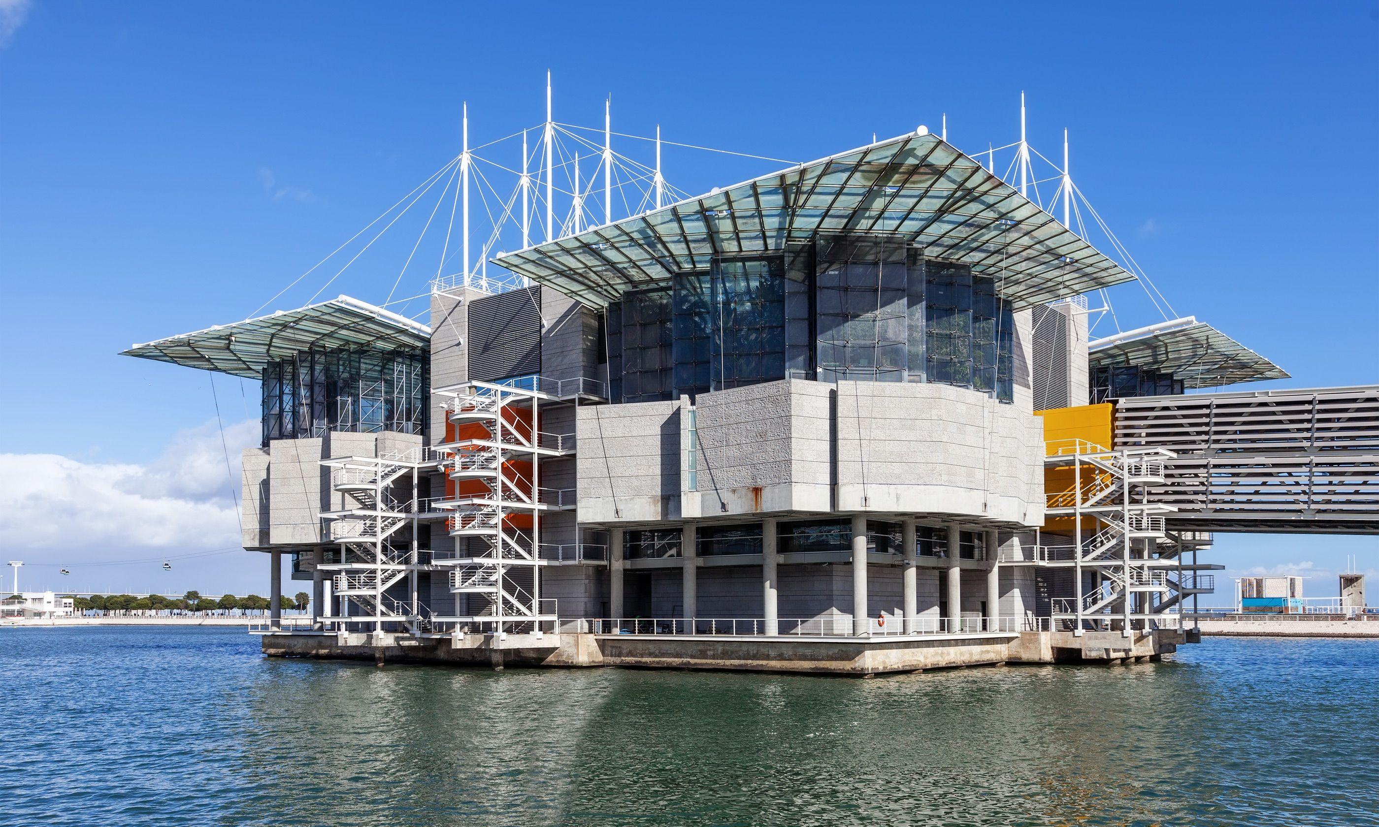 Lisbon Oceanarium (Dreamstime)