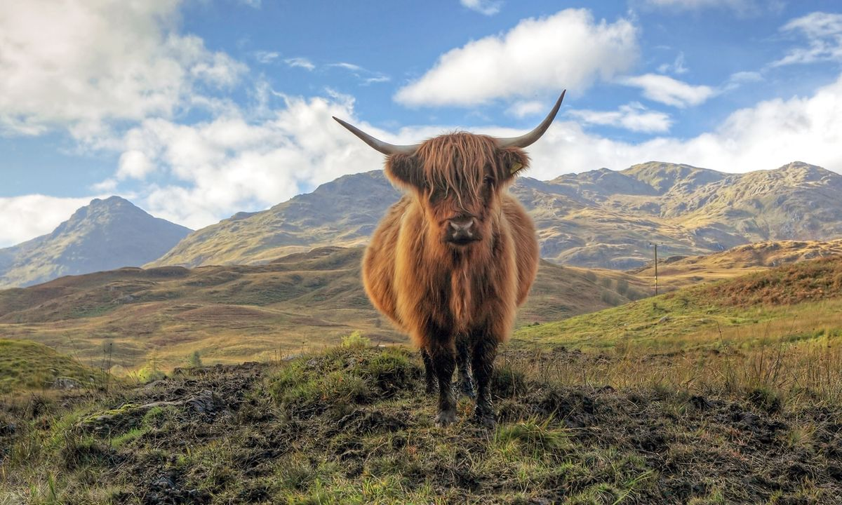 9 things you must do in Scotland