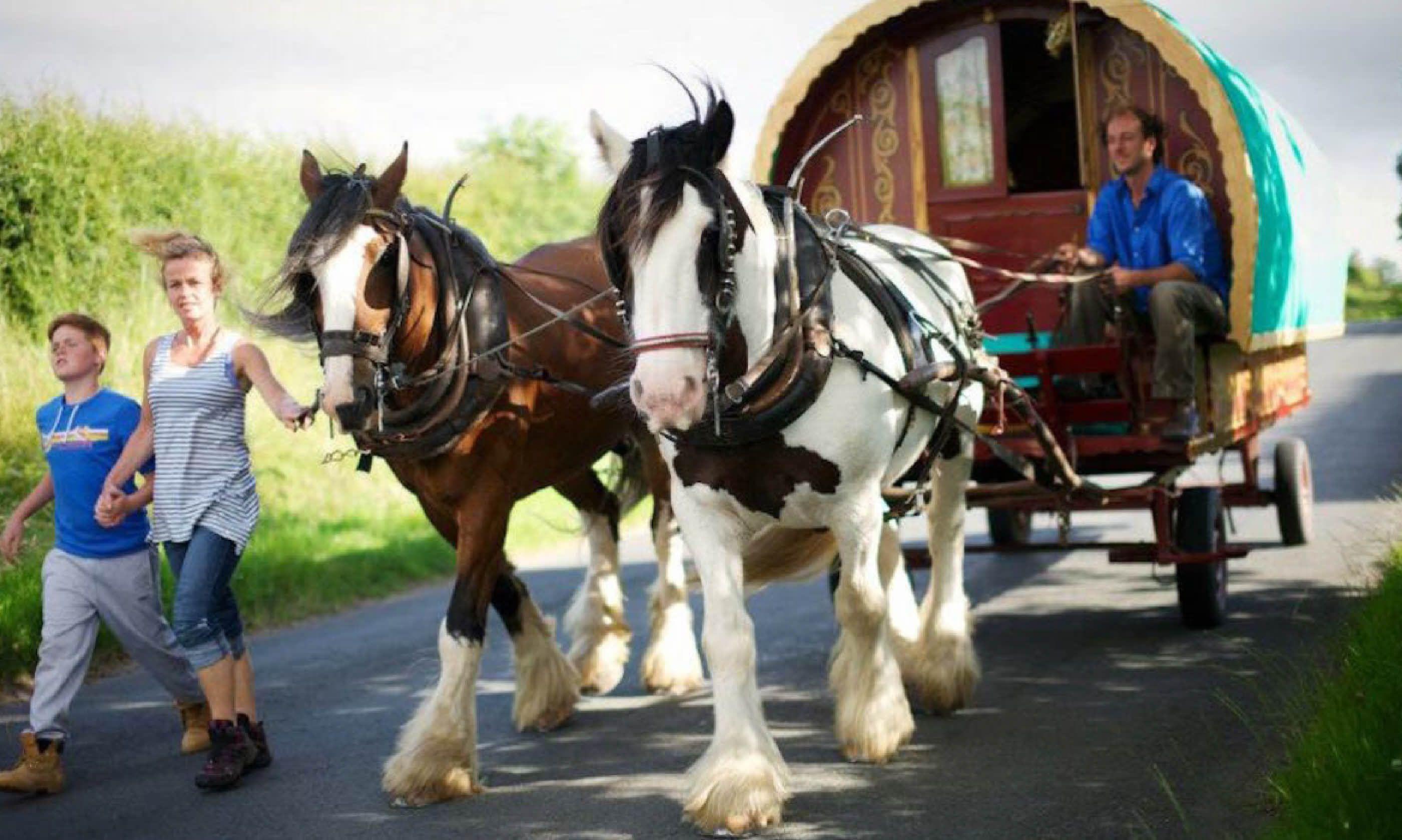 Wanderlusts gypsy caravans, Cool Camping
