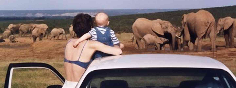 Toddler watching elephants (Melanie Gow)
