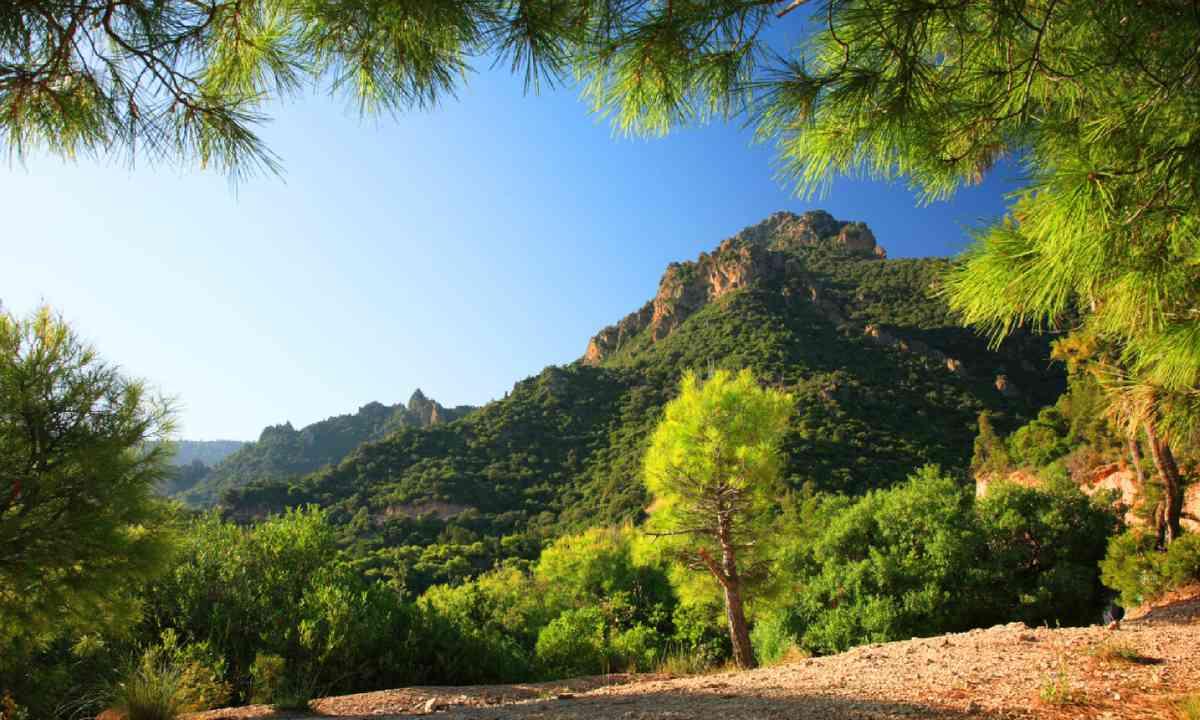 Middla Atlas Mountains, Morocco (Shutterstock)