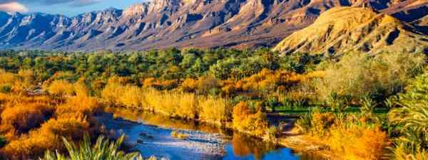 Lush oasis landscape in the Moroccan desert (Shutterstock)