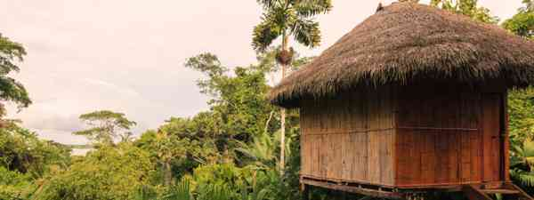 Bamboo Lodge In National Park Yasuni, South America (Shutterstock)