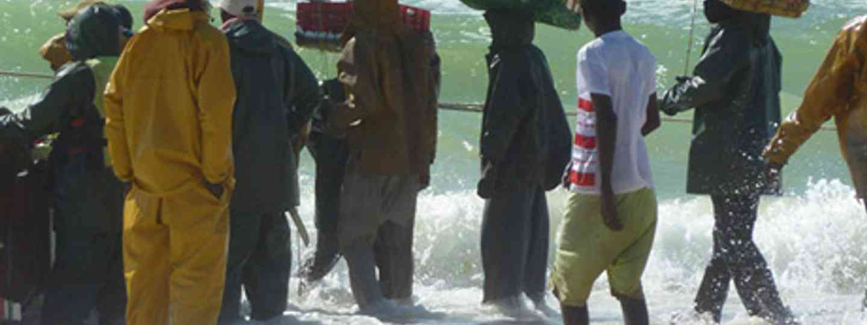 The fishermen of Nouakchott (Marie Javins)