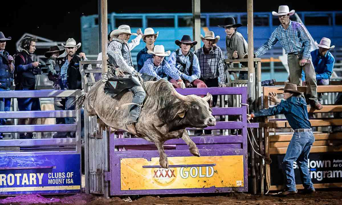 Bull riding at Mount Isa Rodeo (Stephen Mowbray/Mt Isa Rodeo)
