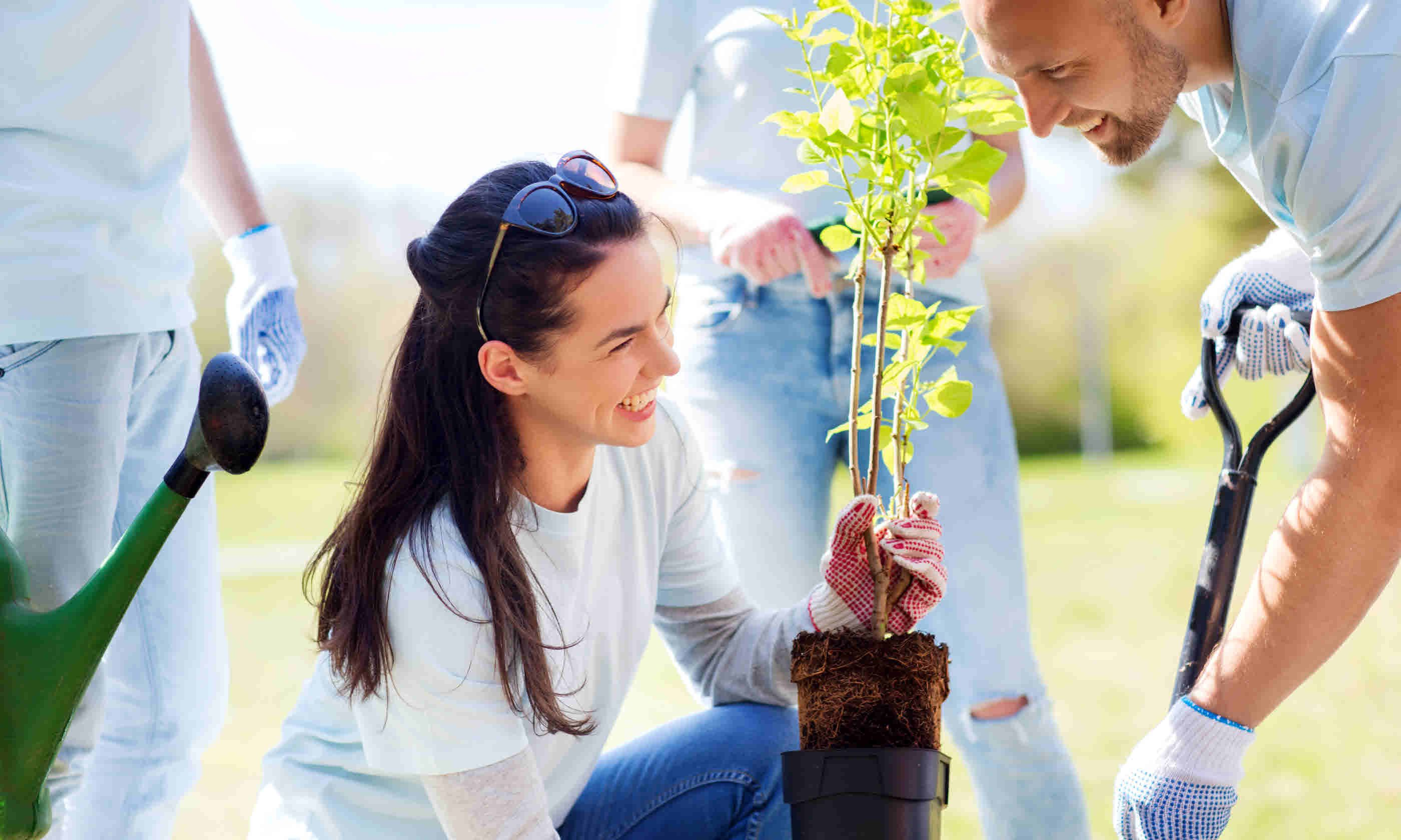 Volunteers planting tree (Shutterstock)