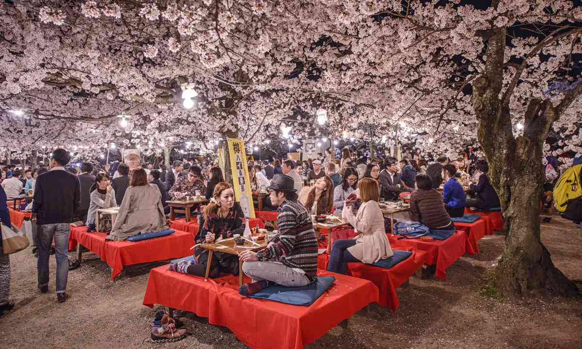 Celebrating under cherry blossoms in Kyoto (Shutterstock.com)