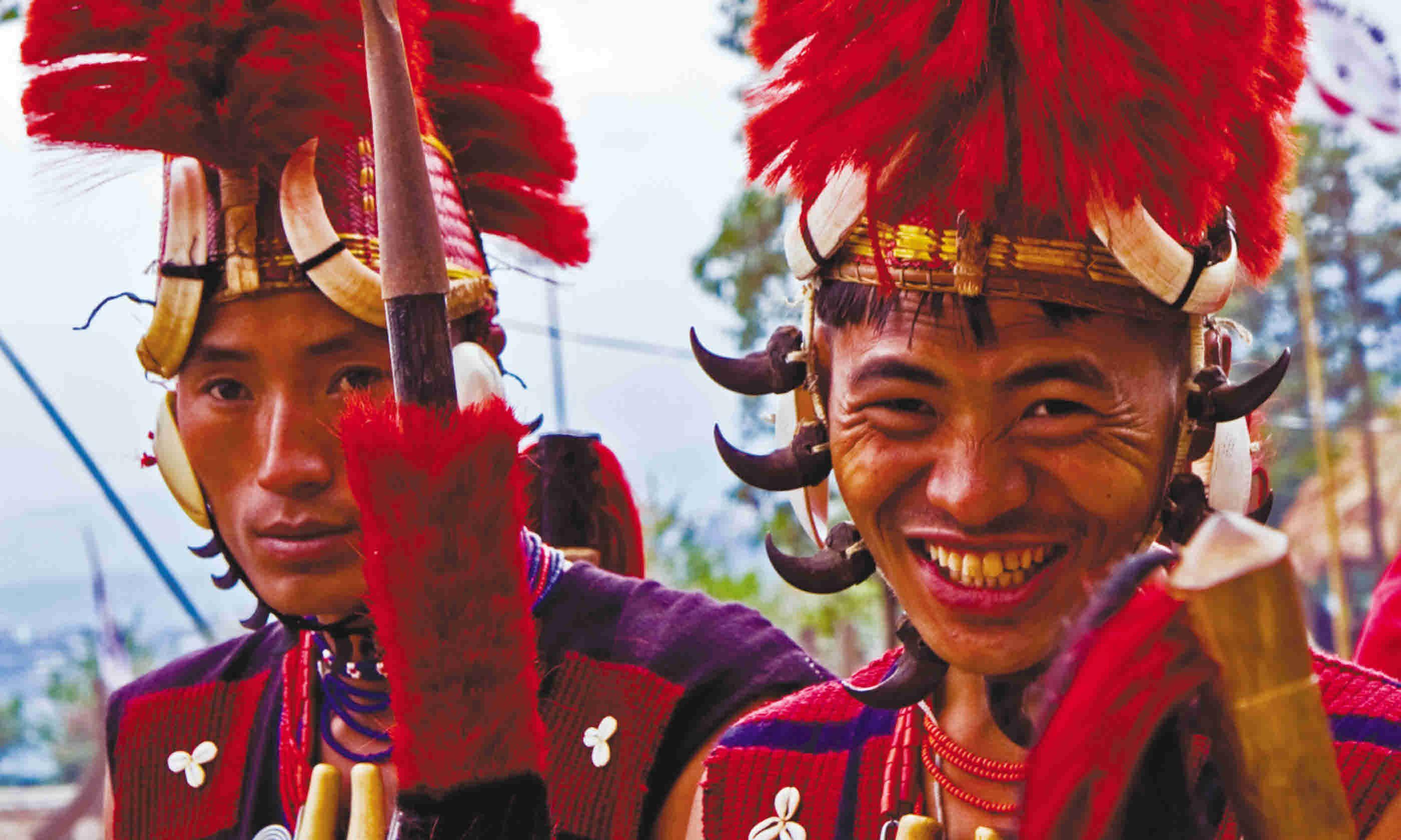 Hornbill tribes