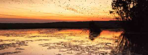 Australia's Northern Territory has a fascinating range of wildlife (Andrew Deer)