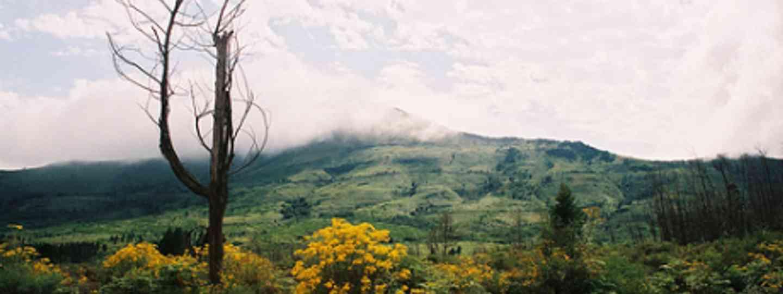 Amatola Hiking Trail, Eastern Cape, South Africa (Flickr: runfreefall)