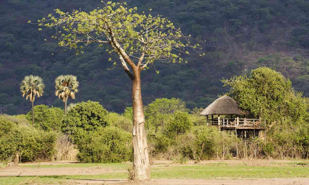 A game boma in Liwonde National Park (Dreamstime)