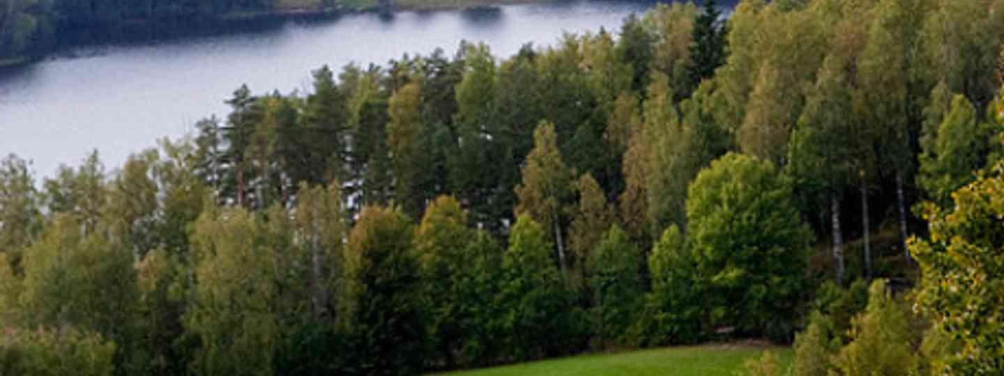 Nuuksio National Park (Olga/)