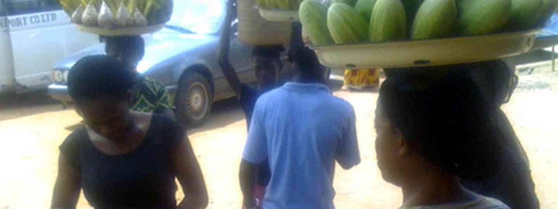 Nigerian Scammers (Marie Javins)