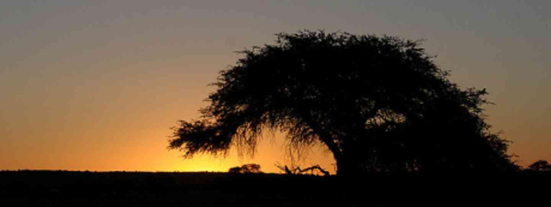 Kalahari sunset (Brian Ralphs)