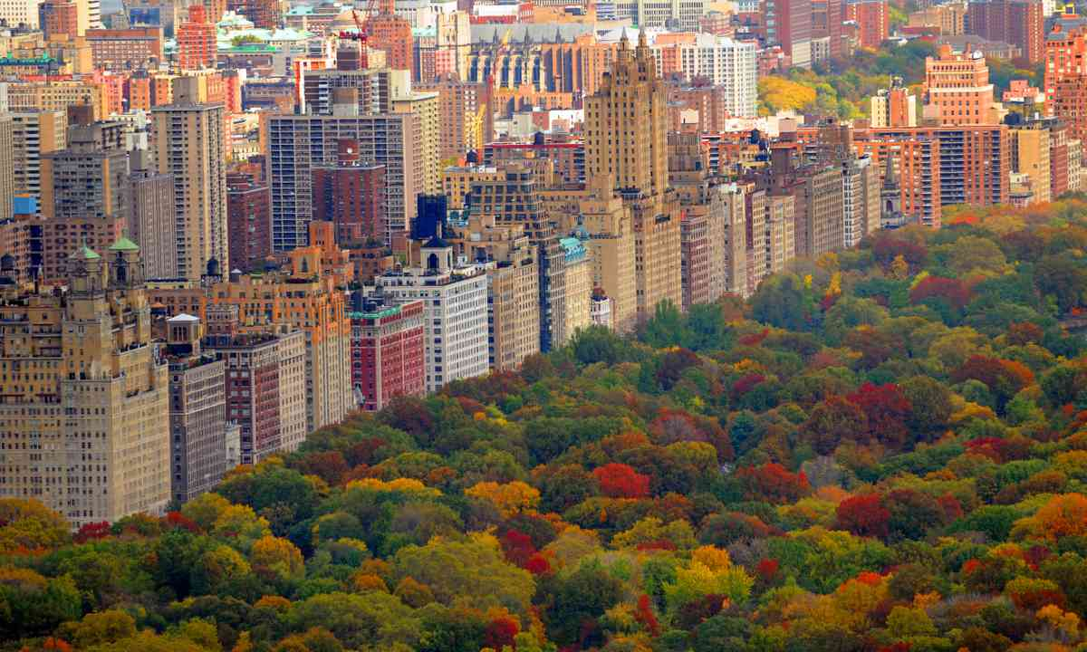 Central Park in autumn (Dreamstime)