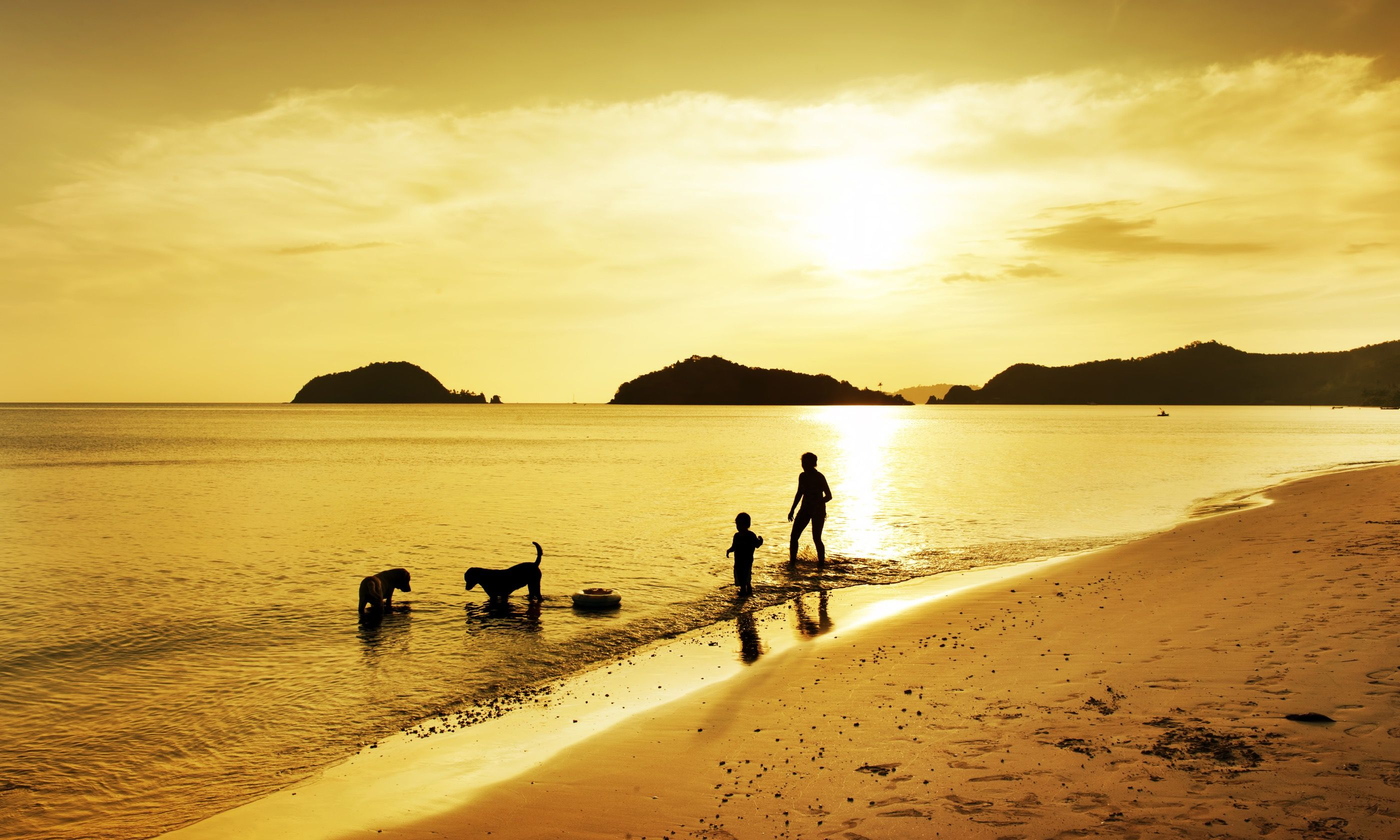 Family walking dog on beach (Shutterstock.com)