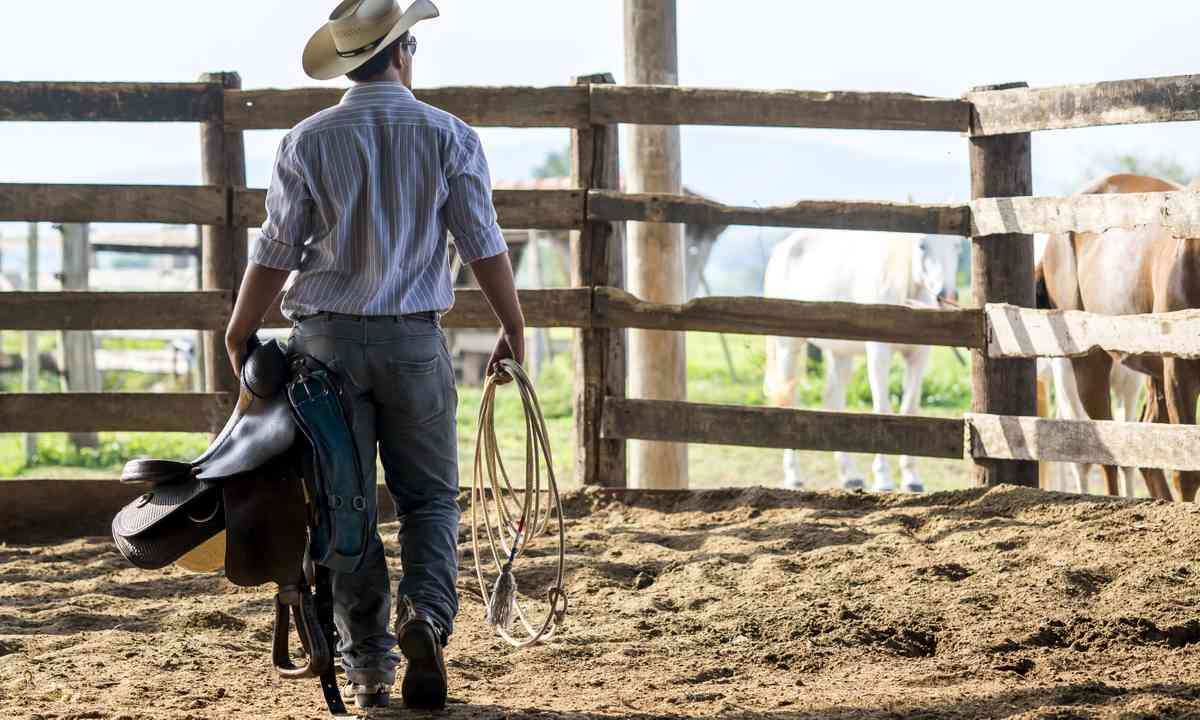 Cowboy showing you the ropes. Literally. (Dreamstime)