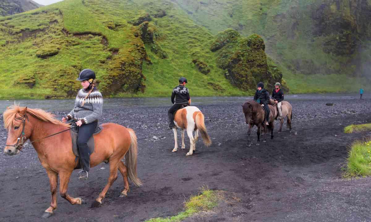 Kids riding Icelandic horses (Shutterstock.com)
