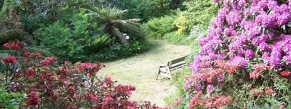 A secret garden in Snowdonia