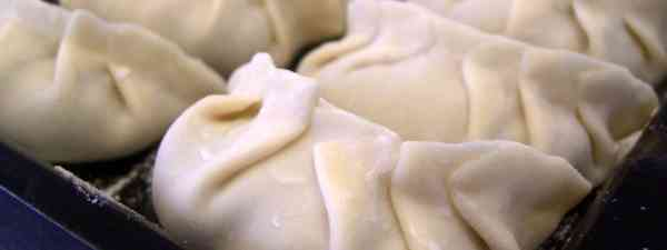 Chinese dumplings can be fliddly to construct (Alpha: avlxyz)