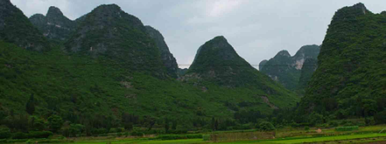 Yangshuo (Augapfel)