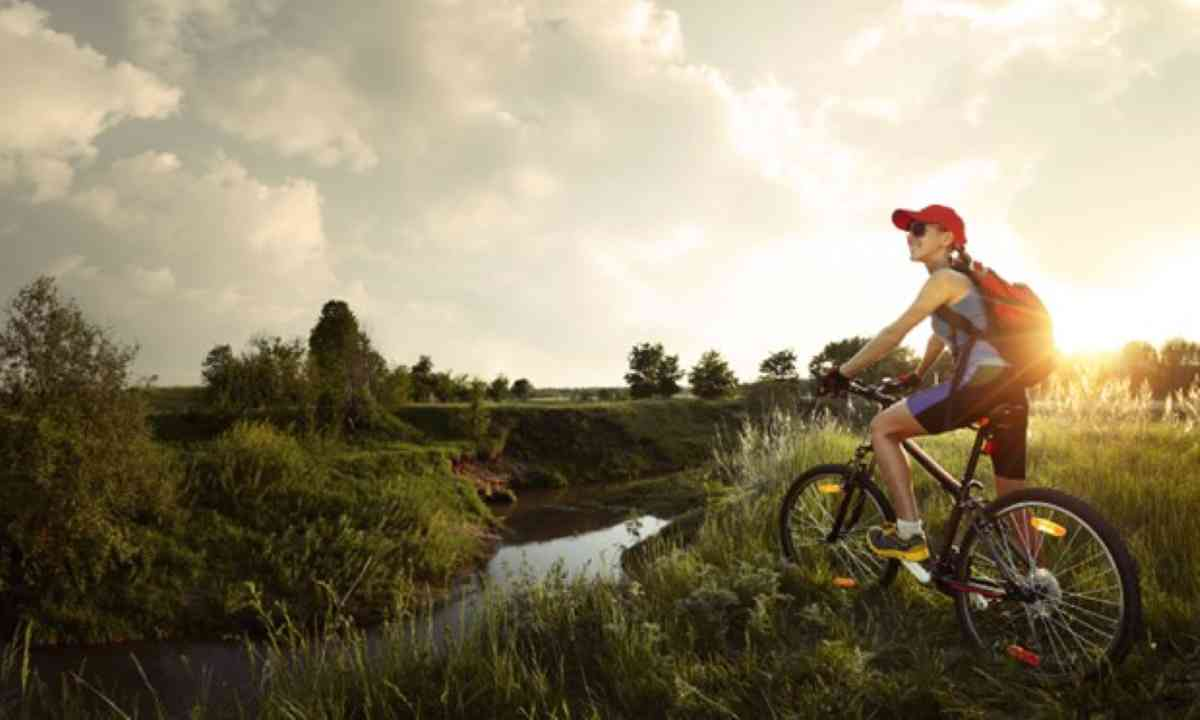 Bicycle on a wild meadow (Shutterstock)