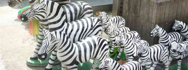 Thai Zebras (Marie Javins)