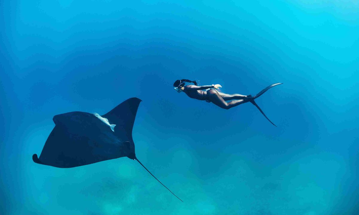5 Of The World's Top Freediving Destinations