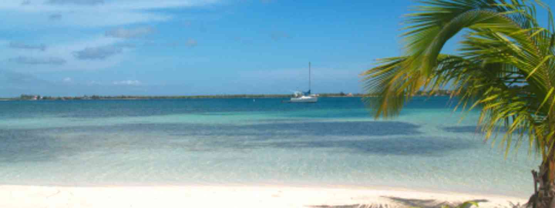 Beautiful beaches and cool coral (RenAc Mayorga)
