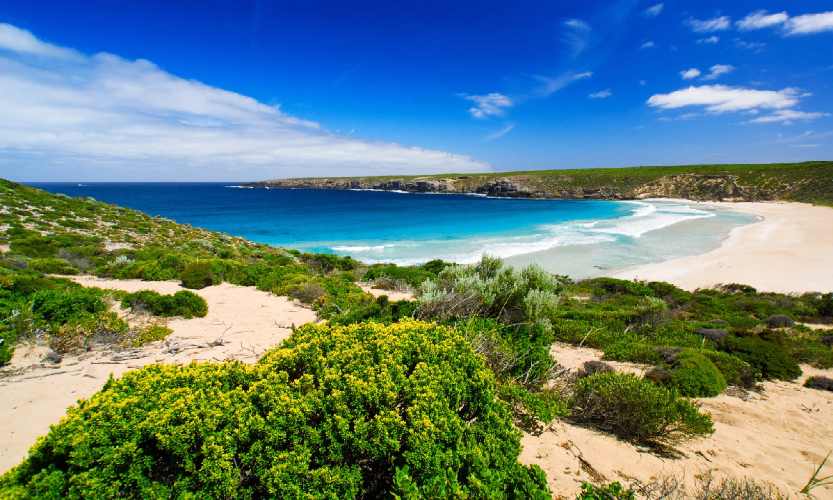 West Bay on Kangaroo Island (Shutterstock)