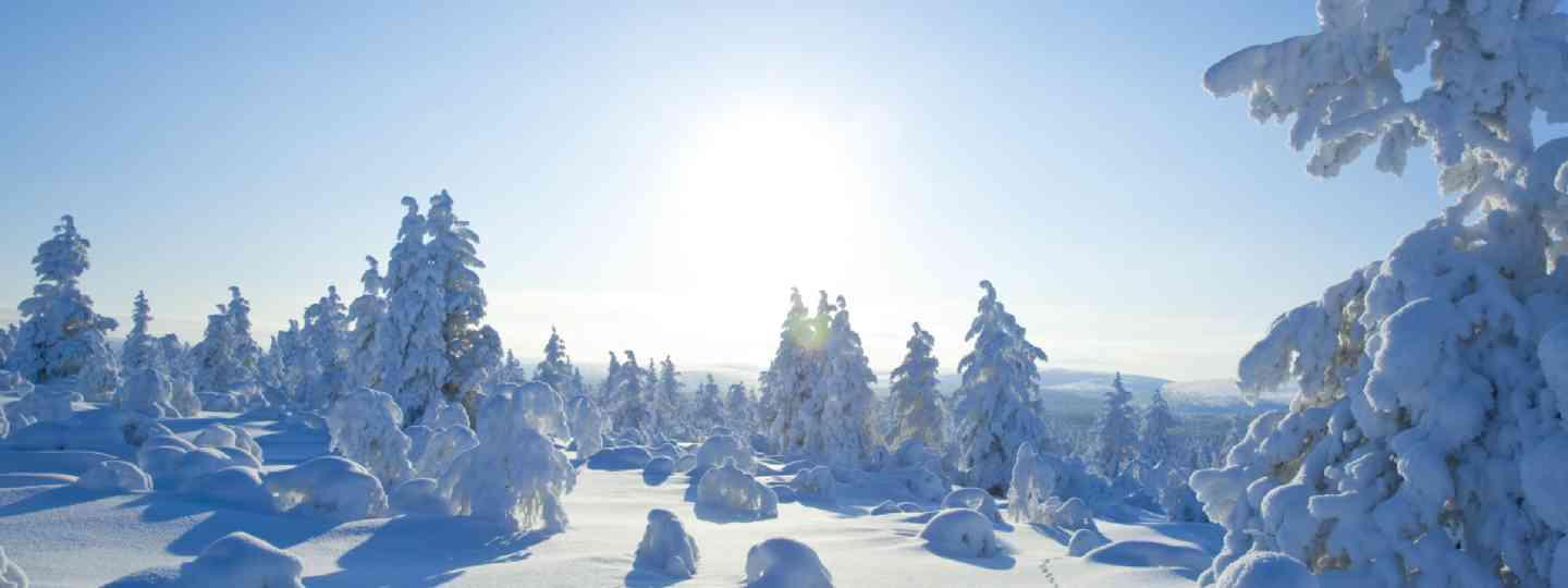 Finland, under a lot of snow (Shutterstock: see credit below)