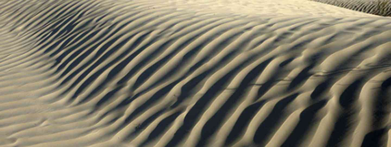 Ride wild in the Tunisian desert (Tom T)