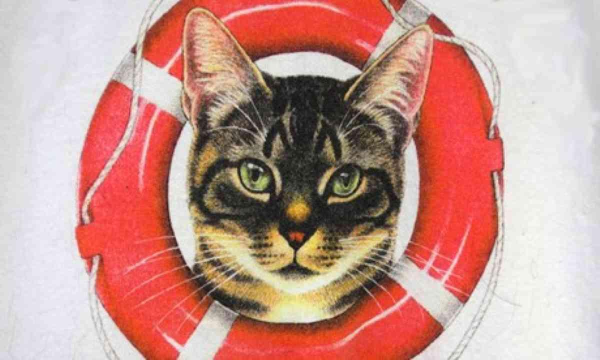 Poezenboot poster (Peter Moore)