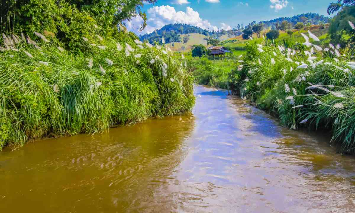 River and hut, Papua New Guinea (Shutterstock)
