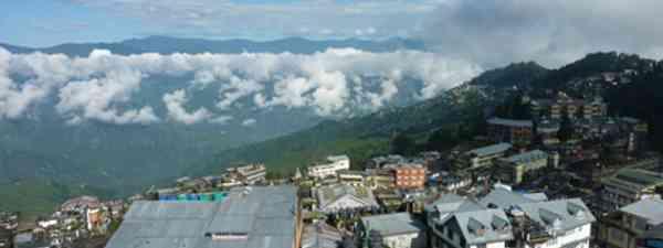 Darjeeling (Marie Javins)
