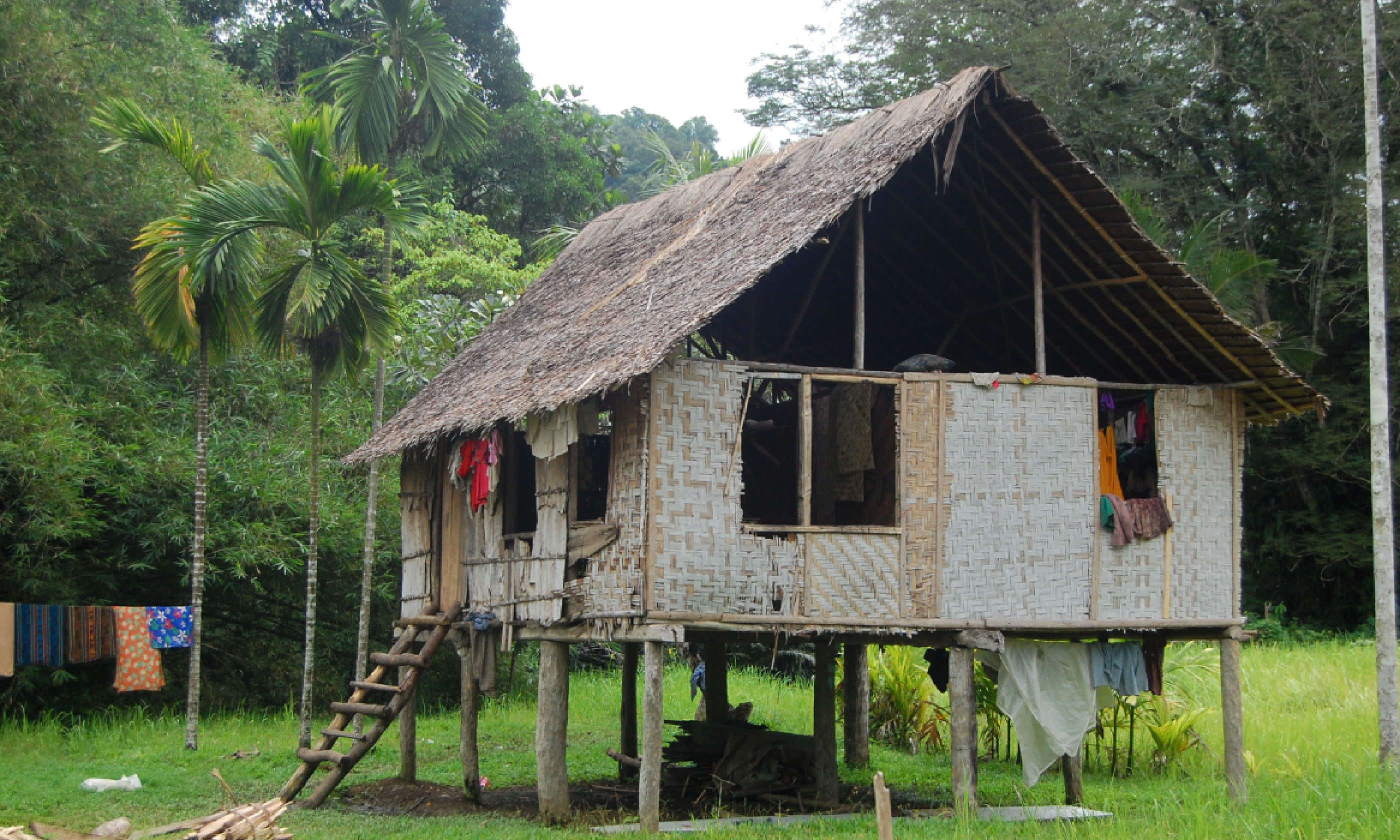 Village House, Papua New Guinea (Shutterstock)